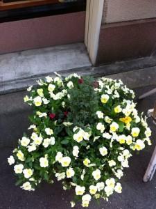 写真 2014-04-25 15 10 16